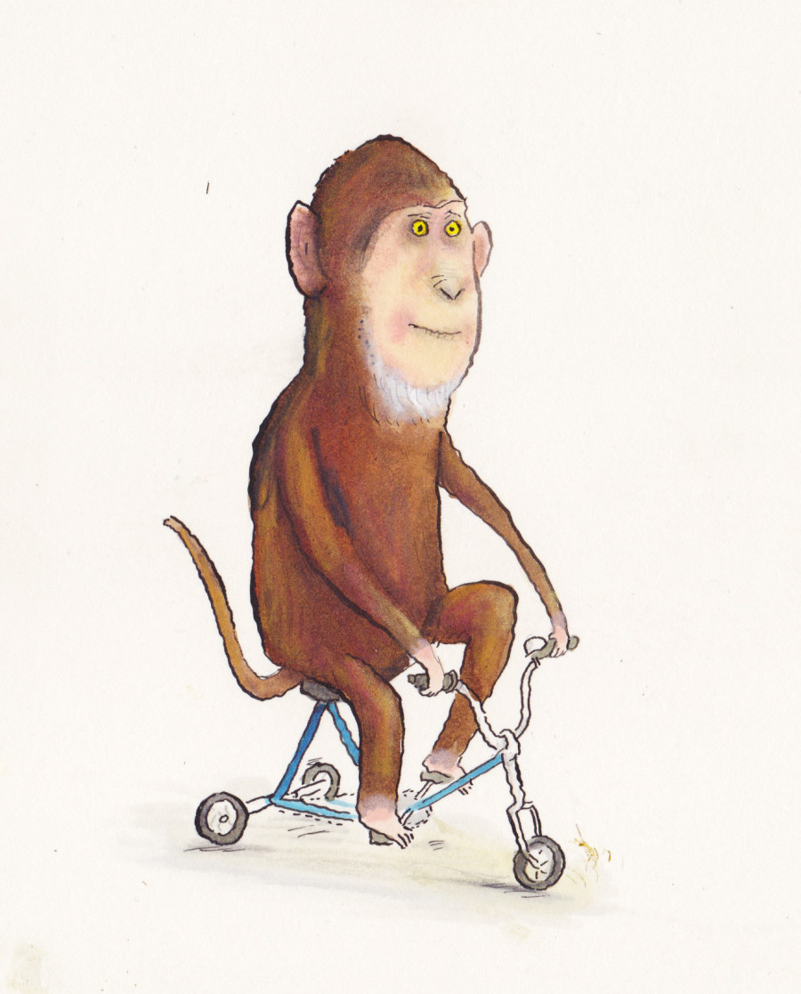 monkey on trike illustration